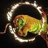 Цирки в Казани